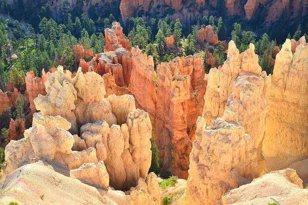 Photograph - Inspiration Point View by Ray Mathis