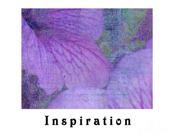 Photograph - Inspiration by Traci Cottingham