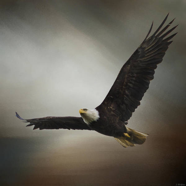Painting - Inspirational Art - Determination by Jordan Blackstone