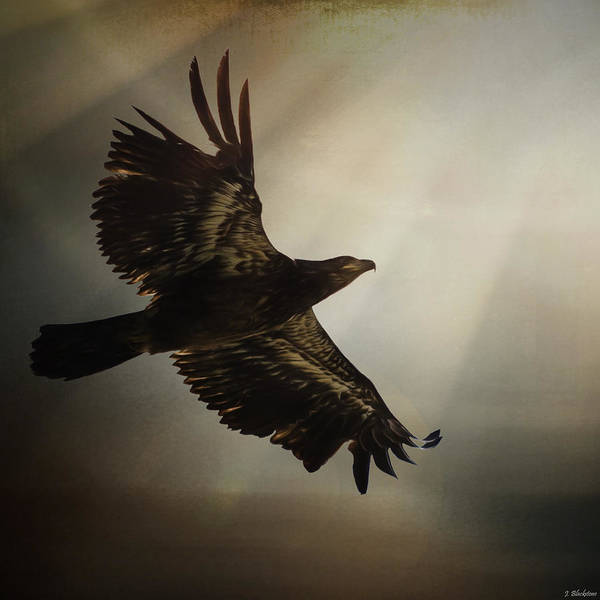 Painting - Inspirational Art - The Light Of Daring by Jordan Blackstone