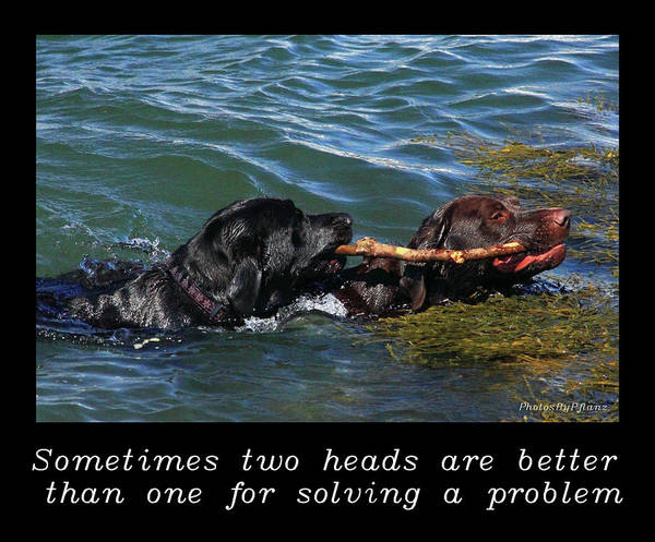 Photograph - Inspirational-two Heads by Brian Pflanz