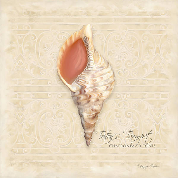 Southern Charm Painting - Inspired Coast 2 - Triton's Trumpet  Chaeronea Tritonis Shell by Audrey Jeanne Roberts