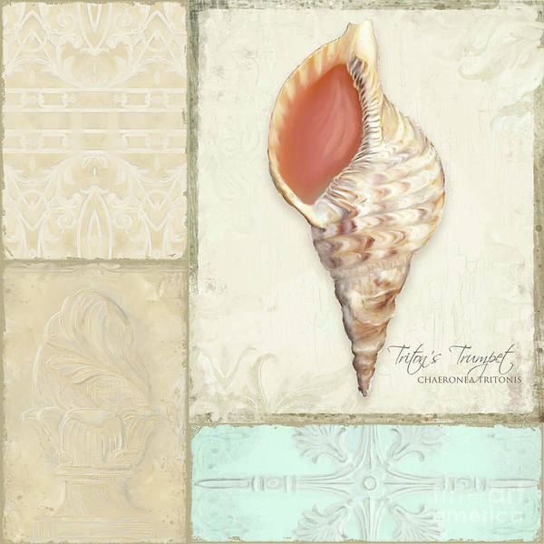 Wall Art - Painting - Inspired Coast Collage - Triton's Trumpet Shell W Vintage Tile  by Audrey Jeanne Roberts