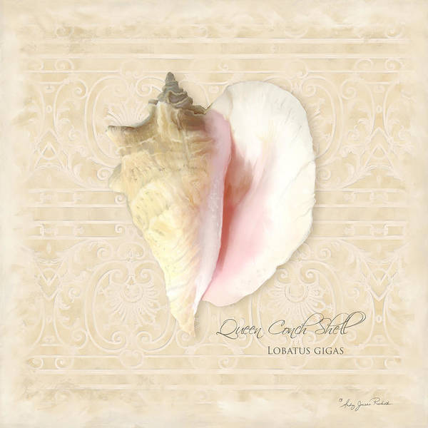 Wall Art - Painting - Inspired Coast I  - Queen Conch Shell Loratus Gigas by Audrey Jeanne Roberts