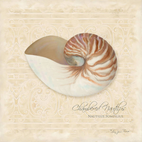 Iron Fence Wall Art - Painting - Inspired Coast Iv - Chambered Nautilus, Nautilus Pompilius by Audrey Jeanne Roberts