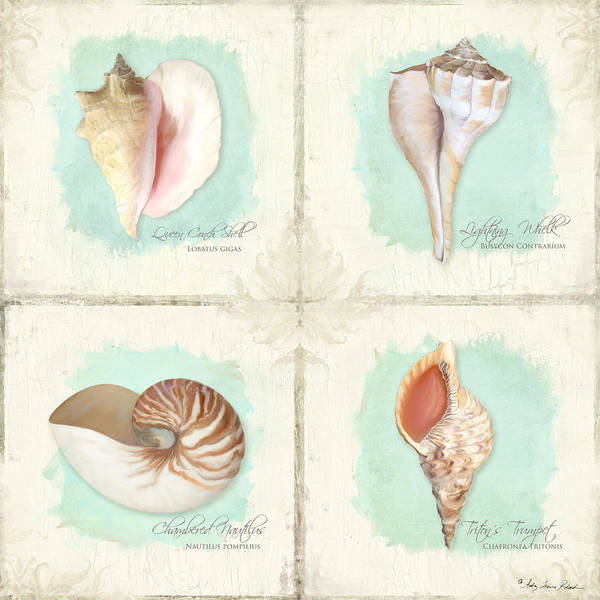 Wall Art - Painting - Inspired Coast Quartet - Seashells On Crackle Texture Board by Audrey Jeanne Roberts