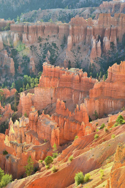 Photograph - Inspiring View by Ray Mathis