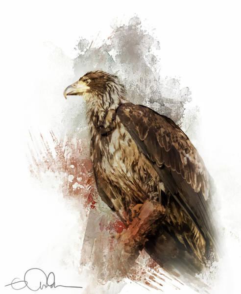 Digital Art - Intense Eagle by Gloria Anderson