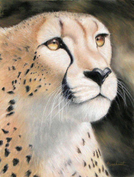 Painting - Intensity - Cheetah by Linda Merchant