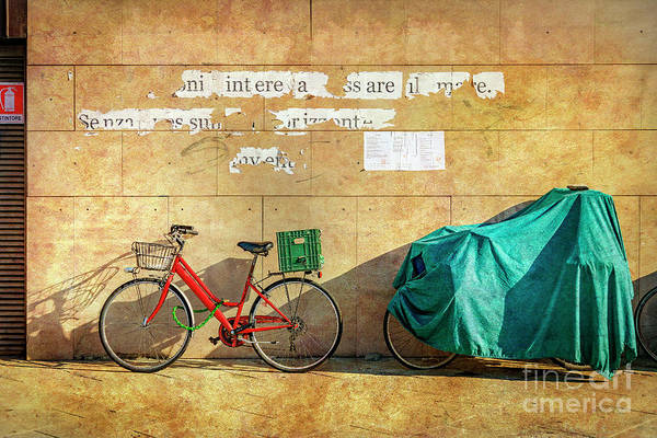 Photograph - Intere Red Bicycle With Green Basket by Craig J Satterlee