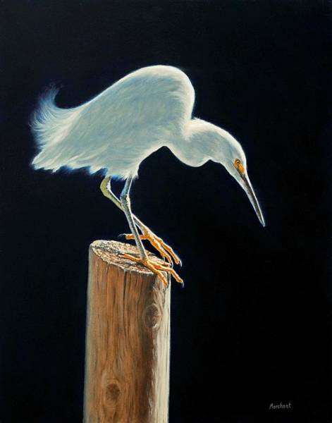 Painting - Interlude - Snowy Egret by Linda Merchant