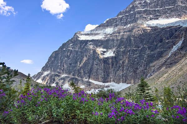 Photograph - Interpretive Apps In The Canadian Rockies by Ken Barrett