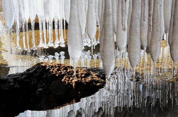 Photograph - Intimacy With Ice by Sean Sarsfield