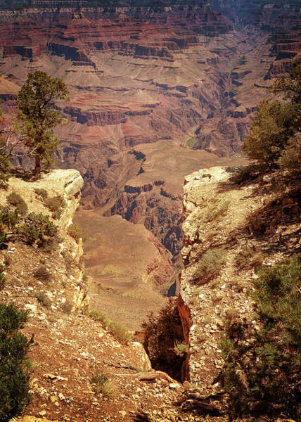 Photograph - Into The Canyon by Susan Rissi Tregoning