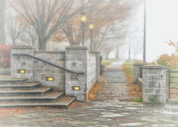 Photograph - Into The Fog by Geoff Crego
