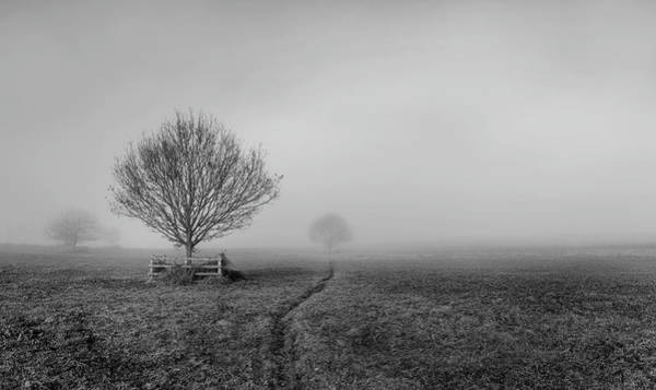 Photograph - Into The Fog by Nick Bywater