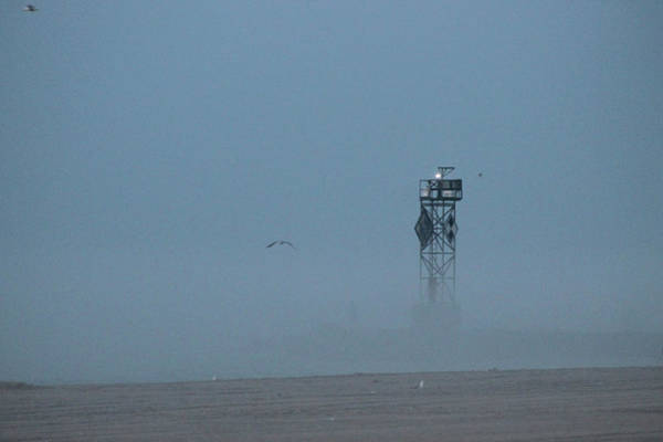 Photograph - Into The Fog by Robert Banach