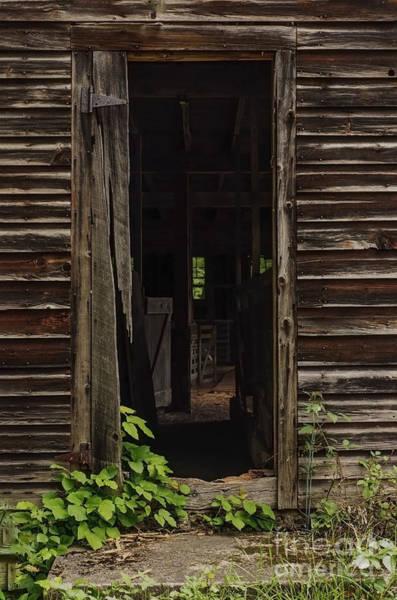 Photograph - Into The Hog Barn by Debra Fedchin