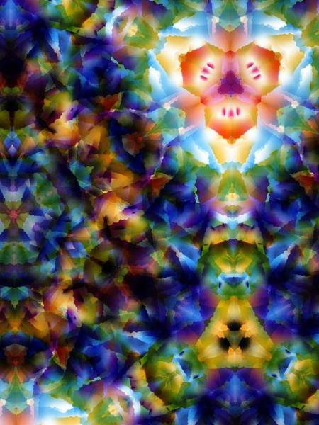 Digital Art - Into The Light by Lisa Schwaberow