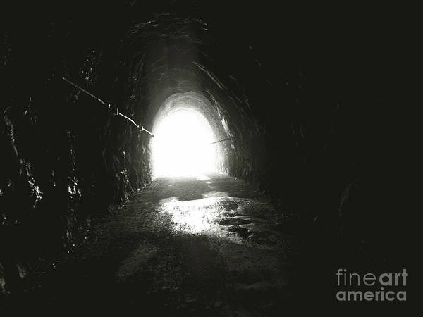 Photograph - Into The Light by Mary Kobet