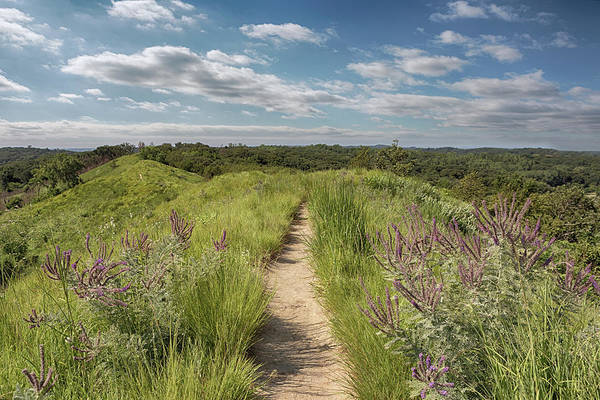 Photograph - Into The Loess Hills by Susan Rissi Tregoning