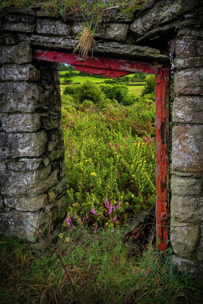Photograph - Into The Magical Irish Countryside by James Truett