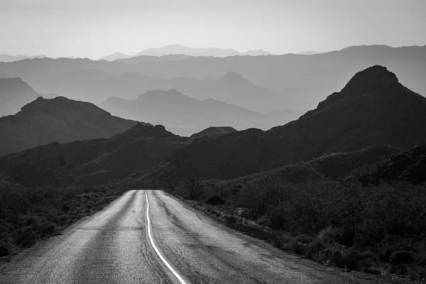 Photograph - Into The Meadows by Brian Grzelewski