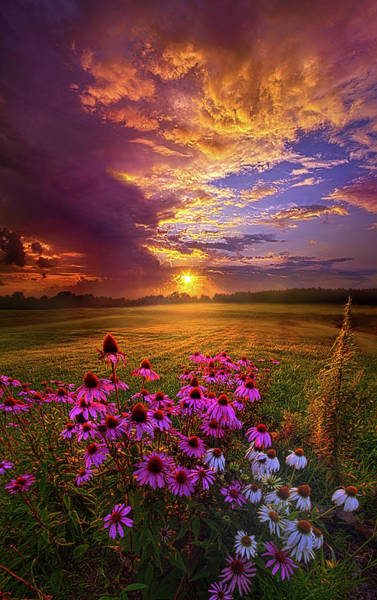Photograph - Into The Moment by Phil Koch