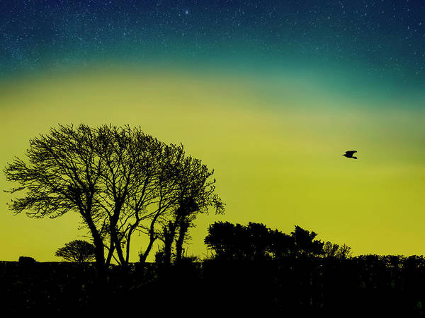 Photograph - Into The Night by Paul Wear