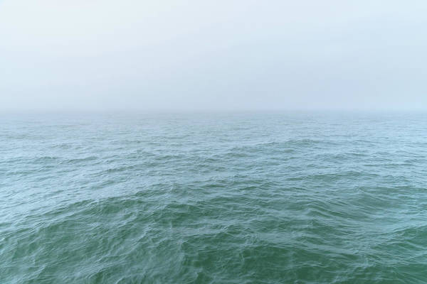 Photograph - Introversion by Alexander Kunz