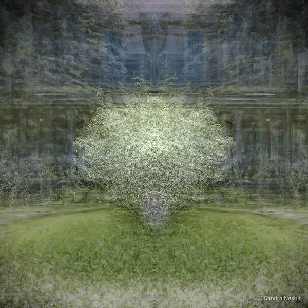 Multiple Exposure Digital Art - Grace Surrounding by Sandra Nesbit