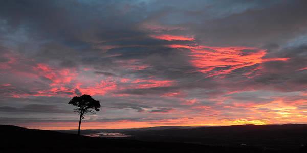 Photograph - Inverness Sunrise by Gavin MacRae
