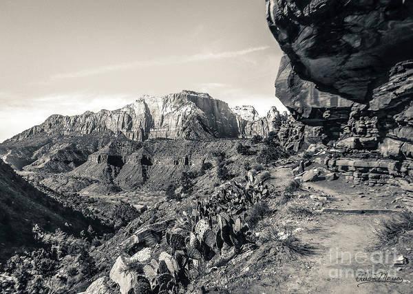 Photograph - Invitation, Black And White by Adam Morsa