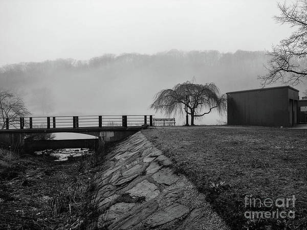 Photograph - Inwood Hill Park In Fog by Cole Thompson