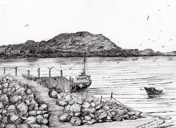 Gulls Wall Art - Drawing - Iona From Mull by Vincent Alexander Booth
