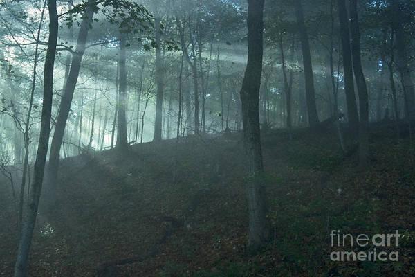 Photograph - Iowa Fog Rays by Sven Brogren