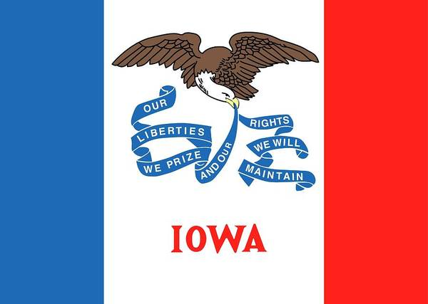 Painting - Iowa State Flag by American School