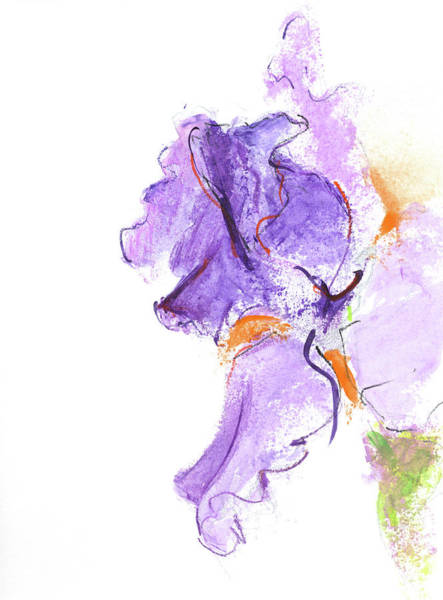 Purple Iris Mixed Media - Rcnpaintings.com by Chris N Rohrbach