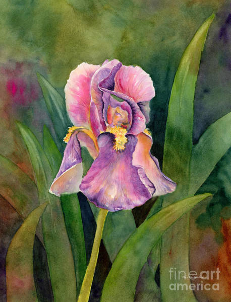 Wall Art - Painting - Iris by Amy Kirkpatrick