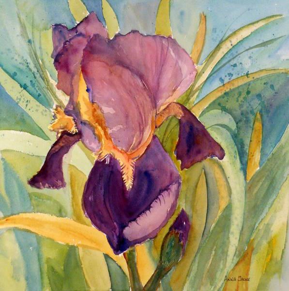 Painting - Iris Bloom by Anna Jacke
