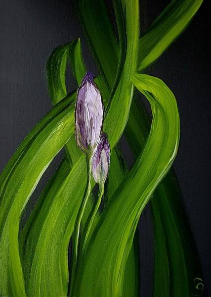 Painting - Iris Buds  49 by Cheryl Nancy Ann Gordon