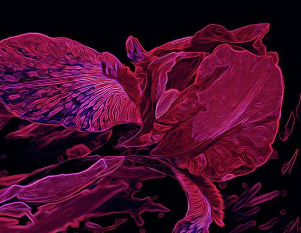 Photograph - Iris Deep Red Glow by Lynda Lehmann