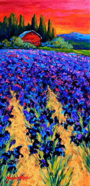 Lavender Painting - Iris Farm by Marion Rose