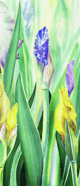 Girly Painting - Iris Flowers Olympic Torches by Irina Sztukowski