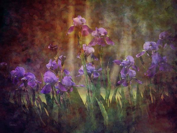 Photograph - Iris Garden 2 9928 Idp_2 by Steven Ward