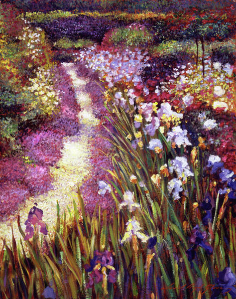 Painting - Iris Garden Path by David Lloyd Glover