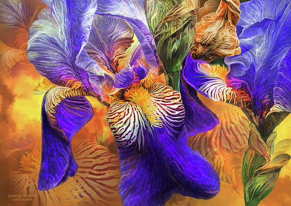 Purple Iris Mixed Media - Iris - Goddess Of Adventure by Carol Cavalaris