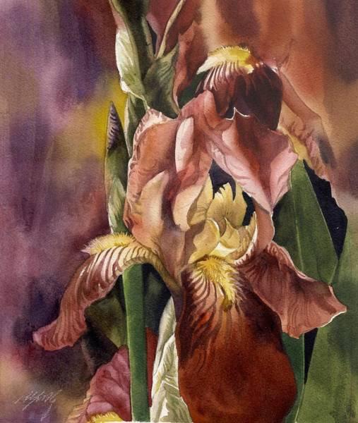 Iris In Red Art Print