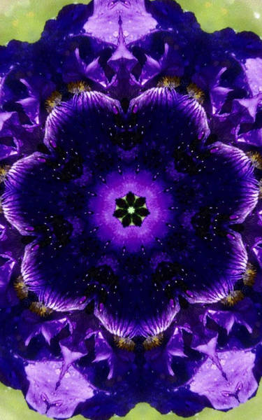 Iris Kaleidoscope Art Print