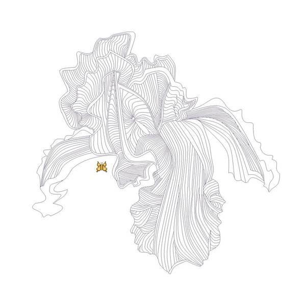 Wall Art - Digital Art - Iris Line Drawing by Anne Norskog